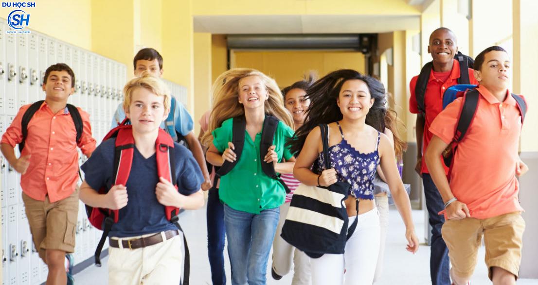 Du học Mỹ - Những điều khác biệt về tuyển sinh Đại học